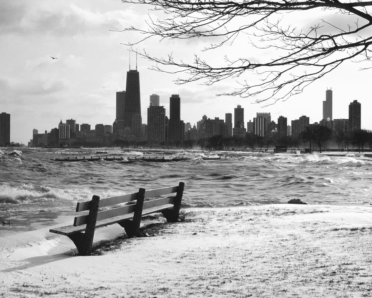 Chicago Black White Wallpaper Lonely Chicago Bench On A Cold